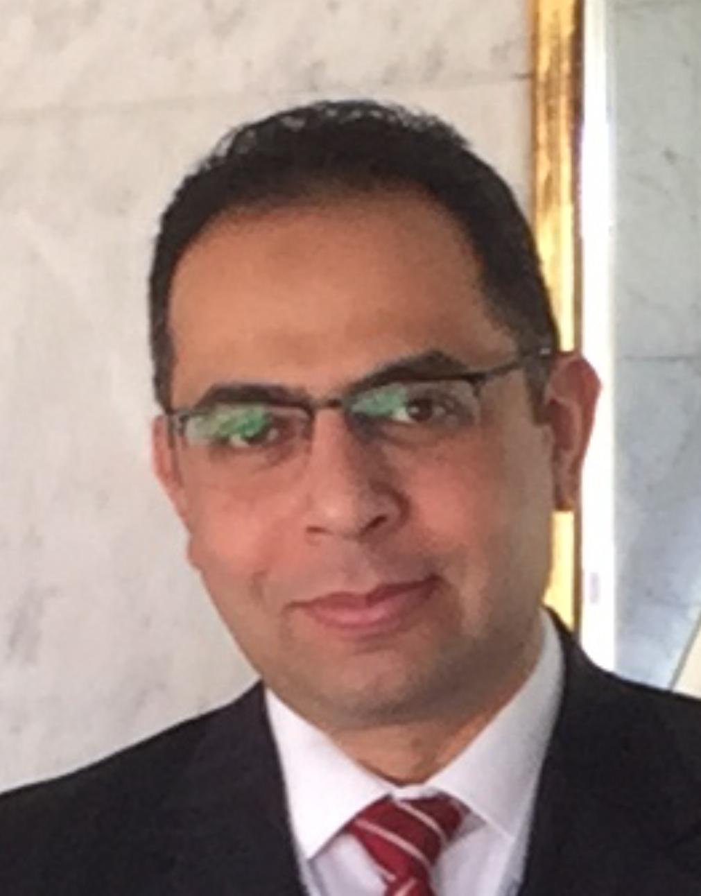 Prof. Mohamed Amr