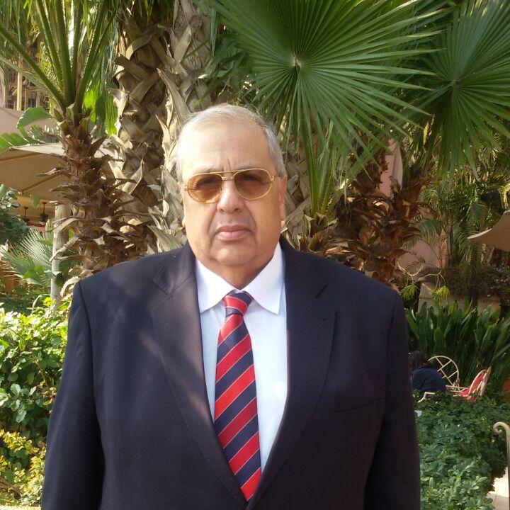 Prof. Mohamed Mahmoud Ibrahim Ahmed-nasr